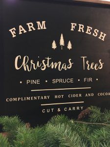 farm fresh trees