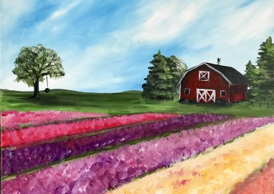 red barn and tulip fields